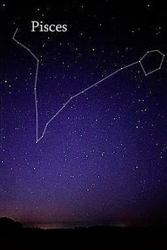 Pisces constellation ; Potential tattoo idea ?