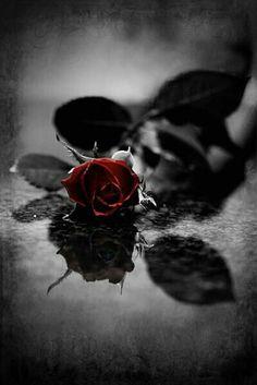 PeranKu Berakhir tak lebih dari Sekedar Penyembuh LukaMu,,,       Dan tak sejenakpun mampu Menjadi pemilik Hatimu...