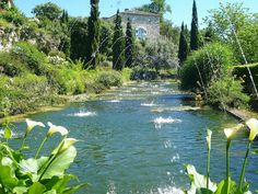 Beautiful French garden in Dordogne: Monsieur Bricolage