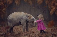 Always better when we're together - Young child with elephant