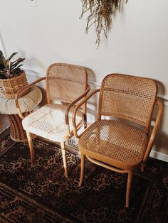 Thonet Bentwood Cane Armchairs cane dining chairs bentwood dining chairs cane dining chairs FMG stamped made in poland Josef Hoffmann by VintageandSwoon from Vintage & Swoon of New Bedford MA Rattan Dining Chairs, Rattan Furniture, Plywood Furniture, New Furniture, Furniture Design, Lounge Chairs, Wicker Armchair, Rattan Bar Stools, Wood Chair Design