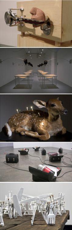 Installation, kinetic sculptures