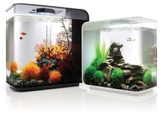 The Biorb Flow is a unique addition to the acrylic aquarium range. Designed to fit in a smaller space than the biOrb range, it is ideal as a focal point in a small flat, study, kitchen or bedroom. Made from strong, crystal clear acrylic and featuring the identical filtration system as the popular biOrb means it is simple and quick to maintain.