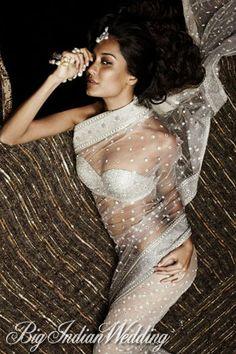 a shimmer net sari by #taruntahiliani