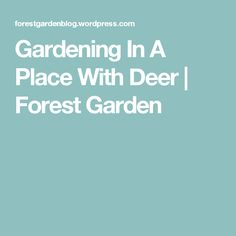 Gardening In A  Place With Deer | Forest Garden