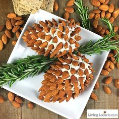 Pine Cone Cheese Ball Appetizer with Almonds. Fun and Easy Christmas Party Appetizer for the holiday season. Delicious f Christmas Party Food, Christmas Appetizers, Appetizers For Party, Appetizer Recipes, Meat Appetizers, Christmas Cheese, Christmas Bread, Vegetable Appetizers, Christmas Dinners