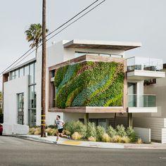 Living Walls by Habitat Horticulture Bay Meadows, Westfield Century City, Zen Bathroom, San Francisco Museums, Menlo Park, Tropical Colors, Museum Of Modern Art, Horticulture, Habitats