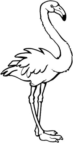 Flamingo coloring page from Flamingos category. Select from 24661 printable crafts of cartoons, nature, animals, Bible and many more.