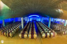 The ultra modern wine cellar at Delaire-Graaf winery in South Africa