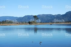 Ruataniwha Inlet, Collingwood, Golden Bay, New Zealand royalty-free stock photo Abel Tasman, Bay News, South Island, Alps, New Zealand, National Parks, Scenery, Royalty Free Stock Photos, Landscape