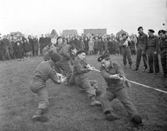 world_war_two - canadian_army - Tug-of-War - The tug-of-war team of The Fort Garry Horse competing against Dutch police team, Doetinchem, Netherlands, November Canadian Army, Tug Of War, World War Two, Ww2, Netherlands, Dutch, Police, November, 21st