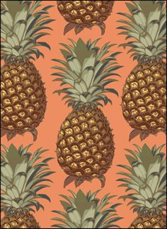 Click to see the actual VN163 - Pineapples stencil design.