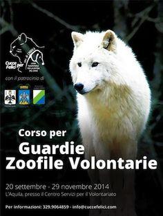 A L'Aquila il 1° Corso per Guardie Zoofile Volontarie - Attualità - Primo Piano #guardie #zoofile #corso #abruzzo #laquila