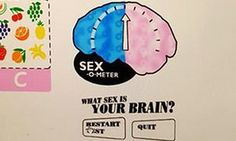 A screen from one of the parts of the interactive exhibit which asks 'What sex is your brain?'