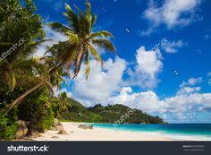Beach With Palm Trees, Seychelles Стоковые фотографии 395999608 : Shutterstock