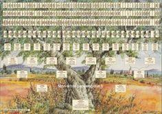 Mon arbre généalogique - Faîtes appel à un généalogiste professionnel - Voir les tarifs