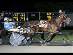Saratoga Casino and Raceway Harness Racing 2011