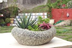 Mini jardim de suculentas em vaso vietnamita.