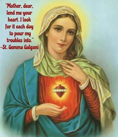 Immaculate Heart Of Mary 1 Catholic picture print I Love You Mother, Mother Mary, Elizabeth Ann Seton, Mary 1, Catholic Pictures, Beautiful Prayers, Thing 1, Blessed Virgin Mary, Blessed Mother