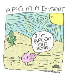 A pig in a desert // funny pictures - funny photos - funny images - funny pics - funny quotes - #lol #humor #funnypictures