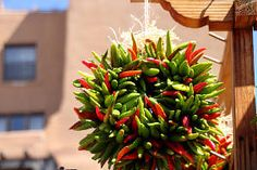 Chili Peppers and Southwestern Cuisine - When you think of the American southwest, you instantly think of chili peppers: chili rellenos and huevos rancheros, yum! But archaeologists have long been aware that the people of the American southwest didn't use chili peppers in their recipes until after the Spanish colonization in the 16th century AD.