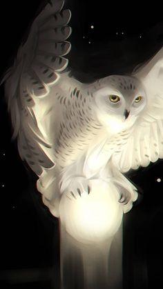owl art projects for kids ; owl art for kids ; Cats Wallpaper, Tier Wallpaper, Animal Wallpaper, Owl Wallpaper Iphone, Cute Owls Wallpaper, Beautiful Wallpaper, Trendy Wallpaper, Colorful Wallpaper, Black Wallpaper