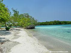 Playas de Morrocoy vea la informacion pronto en morrocoyonline.com