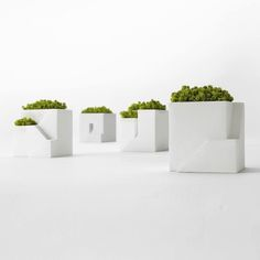 lovely home decoration planter solution
