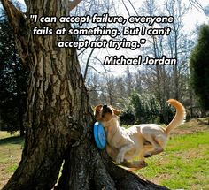 "While the photo is sad/amusing, the quote is the real focus here. Don't be so ""allergic"" to failure that even the possibility of failing stops your from making an attempt."