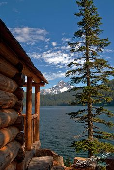 Cabin Fever ~ a cabin, a tree, a lake and a mountain.
