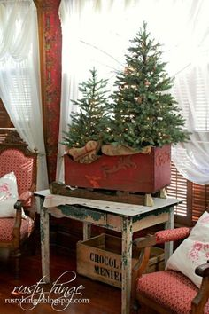 Cute trees in box sleigh on antique table ♡