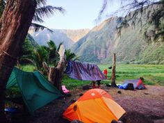 Waimanu, Big Island, Hawai'i  this is actually my dream. once i was hiking in kauai with my mama and i was probably 13 or so and we met...