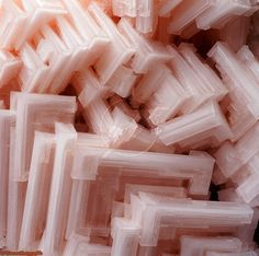 Halite. Salt crystals coloured pink by carotine from organisms in the water in which the crystals grew, Namibia