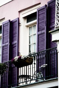 Purple shutters lavender wall