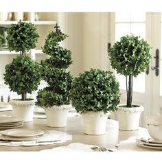 Boxwood Topiaries | Ballard Designs - every room should have some black, some sparkle, and some green