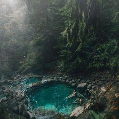 Cougar natural hot springs, Oregon    Damn you, Oregon. You beautiful thing, you...