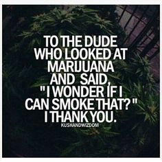 The most recommended cannabis jokes Stoner Quotes, Weed Quotes, Weed Memes, Weed Humor, Funny Quotes, 420 Quotes, Weed Funny, Weed Facts, Frases