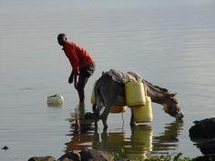 Lake Victoria, Uganda.