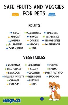 Safe Fruits and Vegetables for your Pets! Find out which foods are good for them! Puppy Treats, Diy Dog Treats, Homemade Dog Treats, Healthy Dog Treats, Healthy Food, Fruit Dogs Can Eat, Foods Dogs Can Eat, Safe Foods For Dogs, Dog Biscuit Recipes