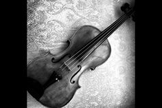 My beloved Viola.  #Branché #Music #Baroque