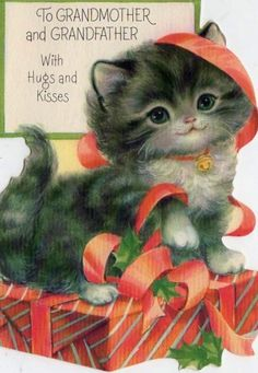 Kitten Christmas card to Grandmother and Grandfather