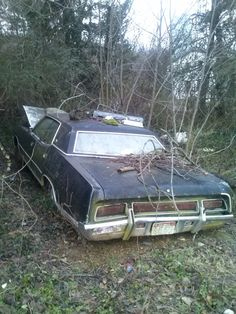 Abandoned 70's Ford LTD 4-door. Found in North Central Arkansas. Tripper's Travels.