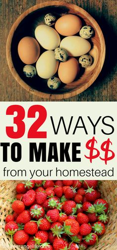 Do you want to become self sufficient and earn a living from your homestead? Here are 32 ways to make money from your homestead!