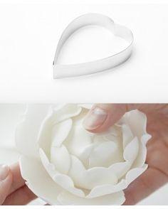 Camellia cortador