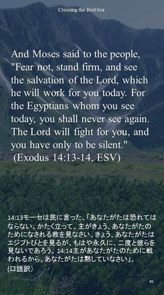 """And Moses said to the people, """"Fear not, stand firm, and see the salvation of the Lord, which he will work for you today. For the Egyptians whom you see today, you shall never see again. The Lord will fight for you, and you have only to be silent."""" (Exodus 14:13-14, ESV)14:13モーセは民に言った、「あなたがたは恐れてはならない。かたく立って、主がきょう、あなたがたのためになされる救を見なさい。きょう、あなたがたはエジプトびとを見るが、もはや永久に、二度と彼らを見ないであろう。 14:14主があなたがたのために戦われるから、あなたがたは黙していなさい」。 (口語訳)"""