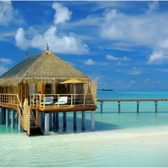 the Maldives. This paradise getaway is widely considered one of the best diving places in the world.