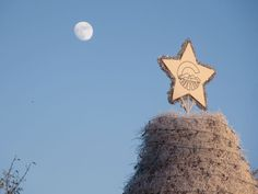 """Top of the holiday """"Tumbleweed Tree."""" Inside the star: C for Chandler, Mountains of AZ and rays of the Western setting sun. Arizona, Mountains, Sunset, Stars, Holiday, Top, Vacations, Sterne, Holidays"""