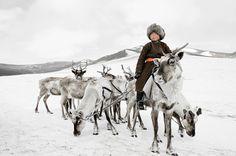 Civilisations primitives en voie de disparitions - Photos de Jimmy Nelson - Tsaatan, Nord de la Mongolie
