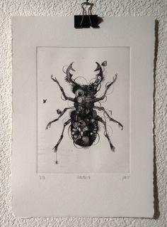 Stagbeetle - original contemporary black and white art print from the series On the Nature of Things