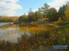 Autumn Beauty on Isabella Lake near orrville Ontario
